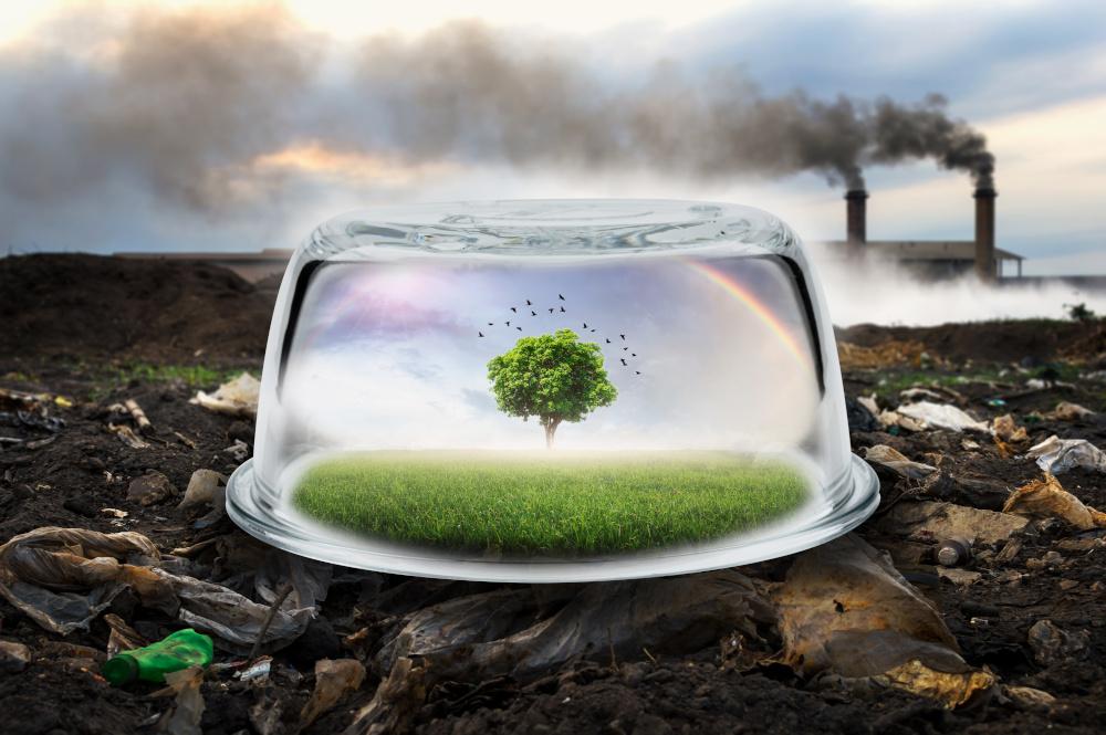 samotne drzewo zamkniete w szklanym sloiku a w tle fabryka ktora emituje duzo czarnego dymu